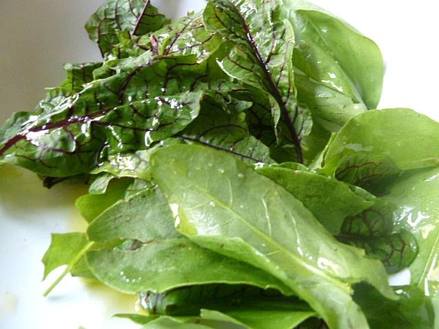 Dazu ein Paar Blätter Sauerampfer als Salat