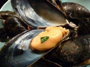 Muschel mit etwas Korianderkraut