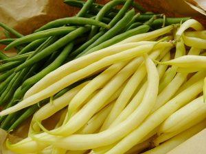 Grüne und gelbe Bohnen