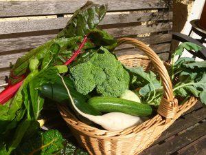 Gemüsekorb vom Bauernmarkt